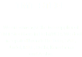 TMT STEEL We are amongst the top supplier of TMT Steel bars in Delhi/NCR. We deal in reputed brands like Tata, SAIL, Jindal, RINL, Rathi, Kamdhenu and Amba.